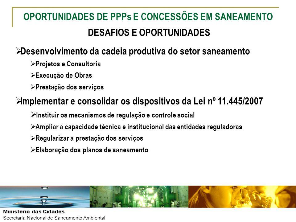 Ministério das Cidades Secretaria Nacional de Saneamento Ambiental Desenvolvimento da cadeia produtiva do setor saneamento Projetos e Consultoria Exec
