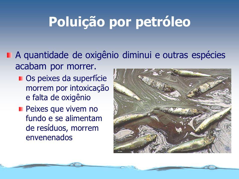 Poluição por petróleo A quantidade de oxigênio diminui e outras espécies acabam por morrer. Os peixes da superfície morrem por intoxicação e falta de