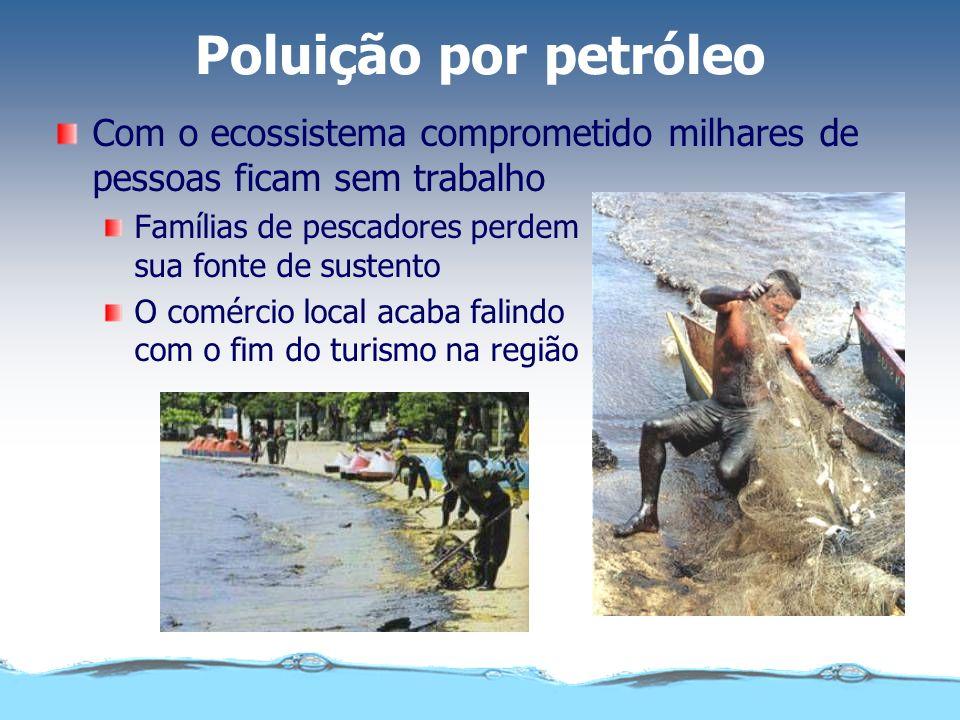Poluição por petróleo Com o ecossistema comprometido milhares de pessoas ficam sem trabalho Famílias de pescadores perdem sua fonte de sustento O comé