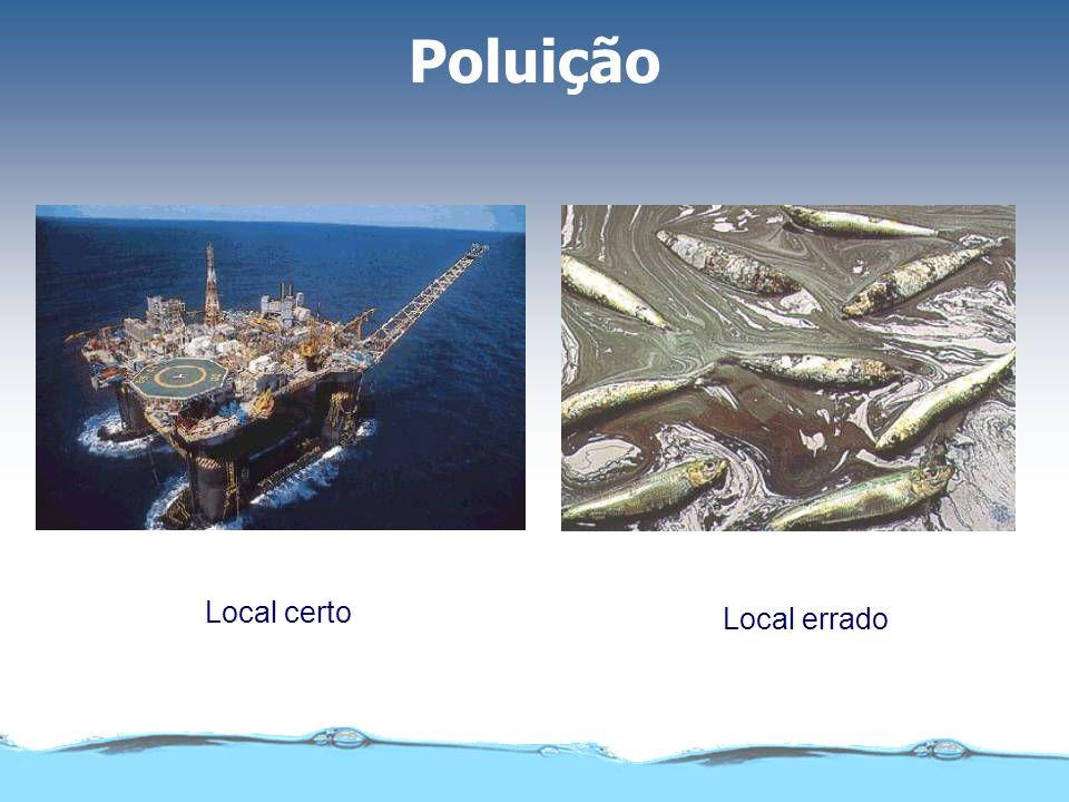 Poluição Local certo Local errado