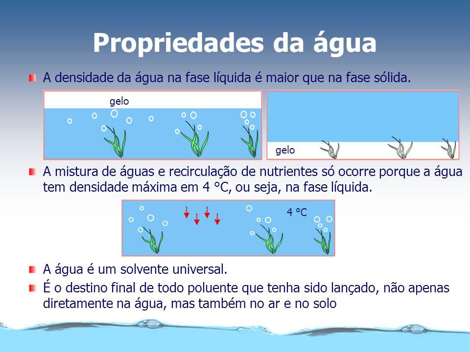 Propriedades da água gelo 4 °C A mistura de águas e recirculação de nutrientes só ocorre porque a água tem densidade máxima em 4 °C, ou seja, na fase