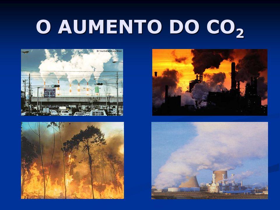 O AUMENTO DO CO 2