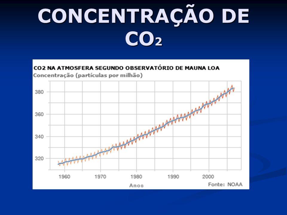 CONCENTRAÇÃO DE CO 2
