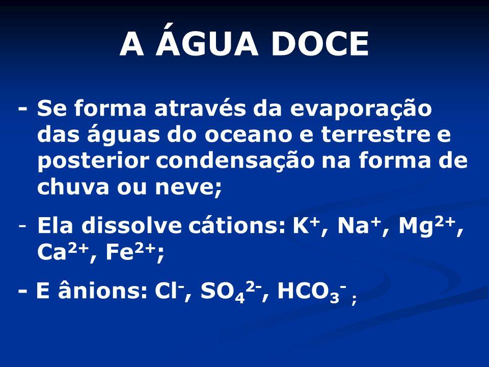 A ÁGUA DOCE - Se forma através da evaporação das águas do oceano e terrestre e posterior condensação na forma de chuva ou neve; - Ela dissolve cátions: K +, Na +, Mg 2+, Ca 2+, Fe 2+ ; - E ânions: Cl -, SO 4 2-, HCO 3 - ;