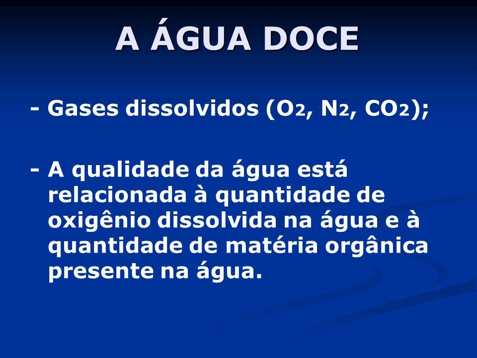A ÁGUA DOCE - Gases dissolvidos (O 2, N 2, CO 2 ); - A qualidade da água está relacionada à quantidade de oxigênio dissolvida na água e à quantidade de matéria orgânica presente na água.