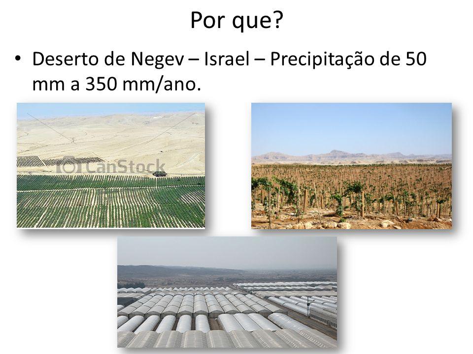 Por que? Deserto de Negev – Israel – Precipitação de 50 mm a 350 mm/ano.