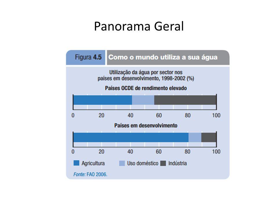 Panorama Geral
