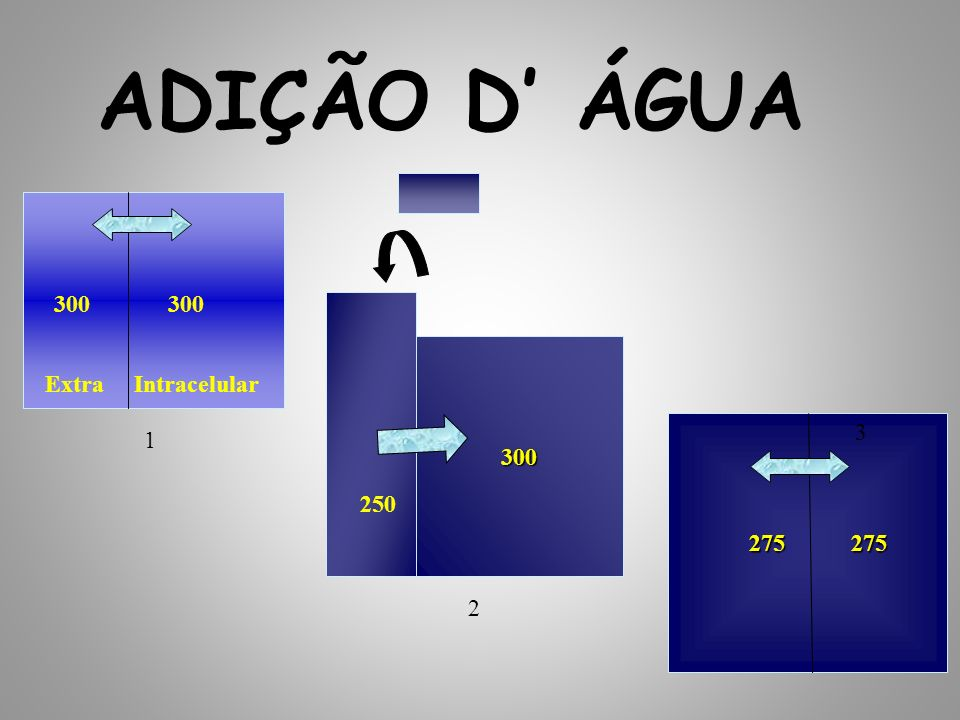 275 275 275 275 300 ADIÇÃO D ÁGUA 300 250 1 2 3 Extra Intracelular