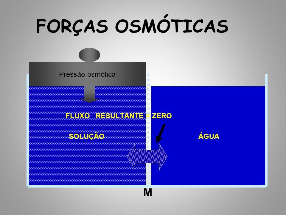 FORÇAS OSMÓTICAS SOLUÇÃOÁGUA FLUXO RESULTANTE = ZERO M Pressão osmótica