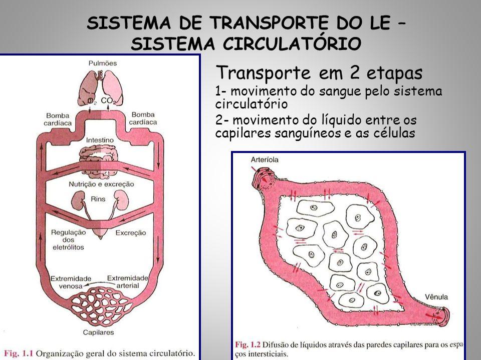 Transporte em 2 etapas 1- movimento do sangue pelo sistema circulatório 2- movimento do líquido entre os capilares sanguíneos e as células SISTEMA DE TRANSPORTE DO LE – SISTEMA CIRCULATÓRIO