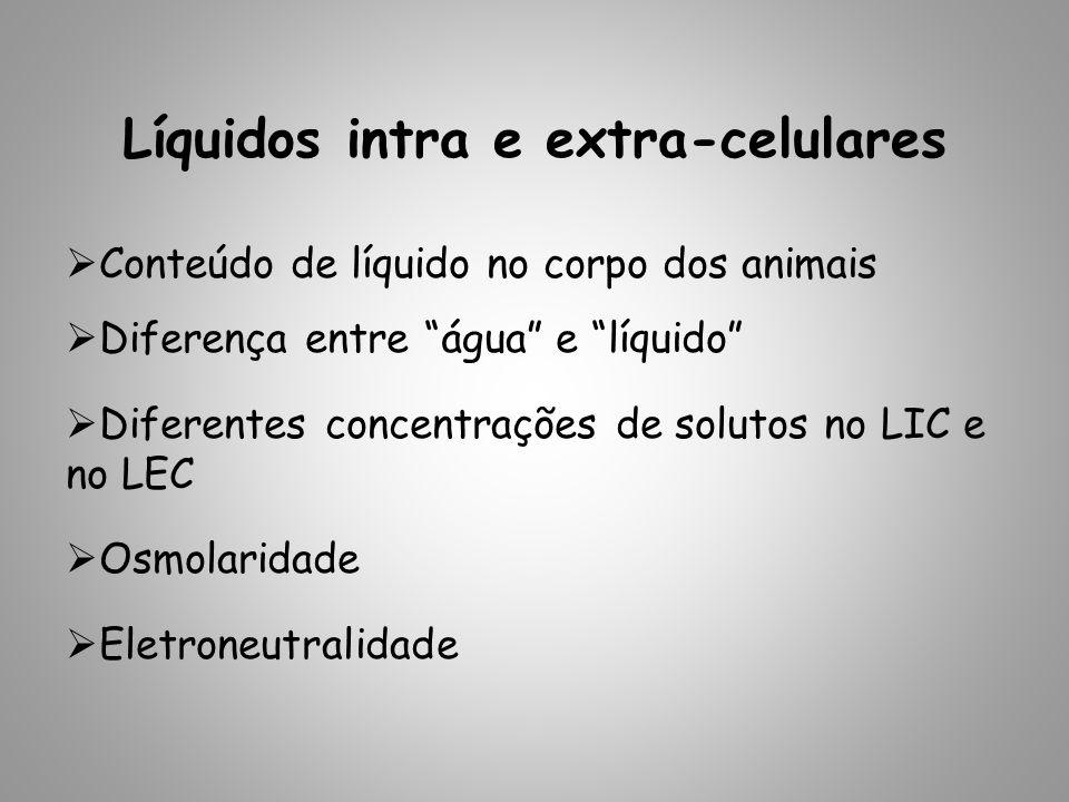 Líquidos intra e extra-celulares Conteúdo de líquido no corpo dos animais Diferença entre água e líquido Diferentes concentrações de solutos no LIC e no LEC Osmolaridade Eletroneutralidade