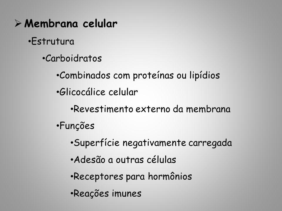 Membrana celular Estrutura Carboidratos Combinados com proteínas ou lipídios Glicocálice celular Revestimento externo da membrana Funções Superfície negativamente carregada Adesão a outras células Receptores para hormônios Reações imunes