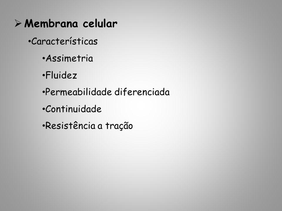 Membrana celular Características Assimetria Fluidez Permeabilidade diferenciada Continuidade Resistência a tração