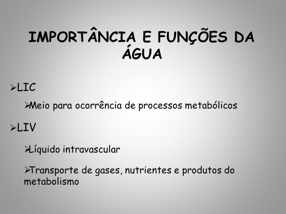 IMPORTÂNCIA E FUNÇÕES DA ÁGUA LIC Meio para ocorrência de processos metabólicos LIV Líquido intravascular Transporte de gases, nutrientes e produtos d
