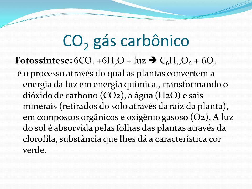 CO 2 gás carbônico Fotossíntese: 6CO 2 +6H 2 O + luz C 6 H 12 O 6 + 6O 2 é o processo através do qual as plantas convertem a energia da luz em energia
