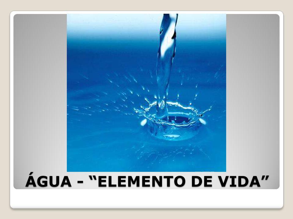 ÁGUA - ELEMENTO DE VIDA Outro processo de purificação de água é a filtração.