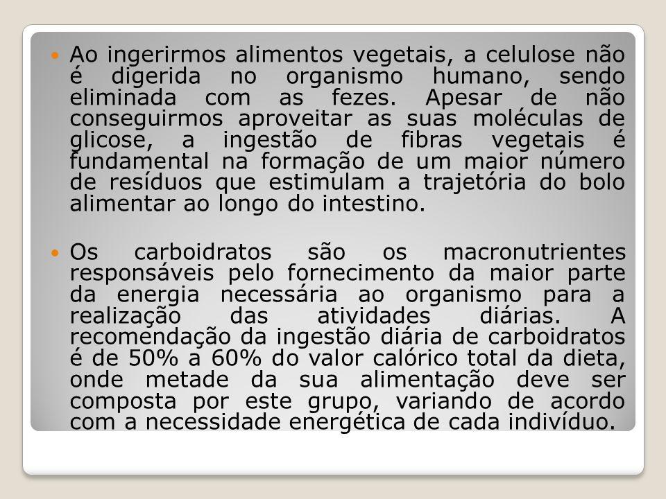 Ao ingerirmos alimentos vegetais, a celulose não é digerida no organismo humano, sendo eliminada com as fezes. Apesar de não conseguirmos aproveitar a