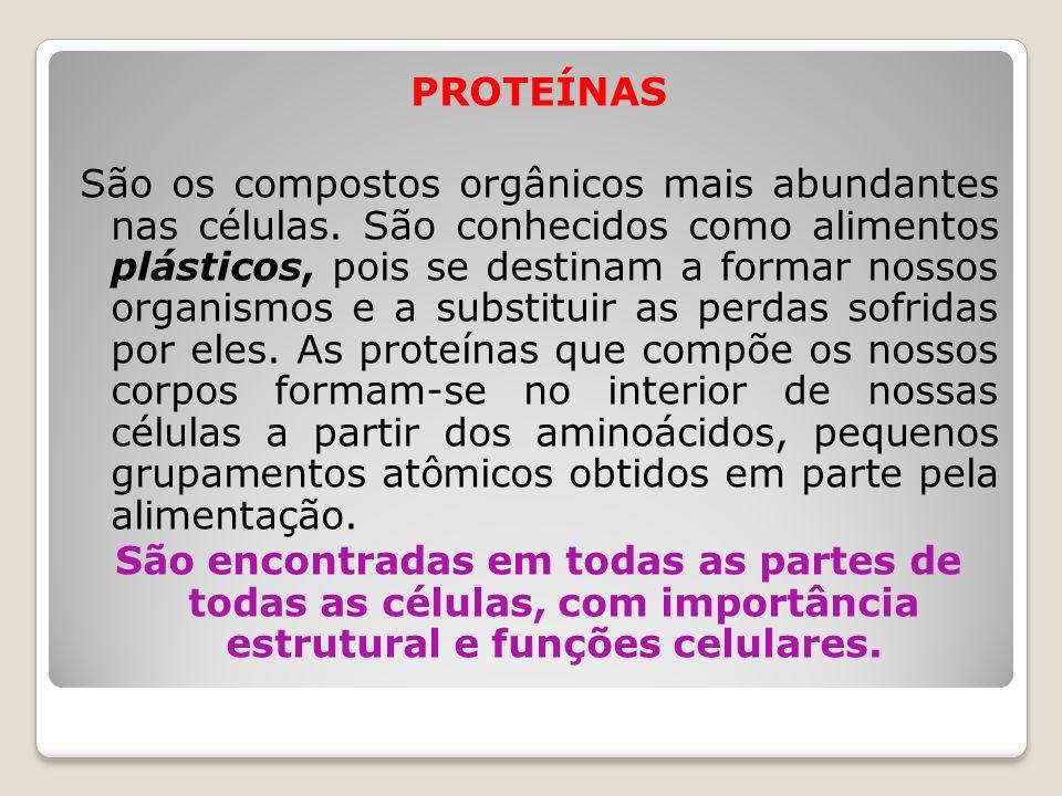 PROTEÍNAS São os compostos orgânicos mais abundantes nas células. São conhecidos como alimentos plásticos, pois se destinam a formar nossos organismos