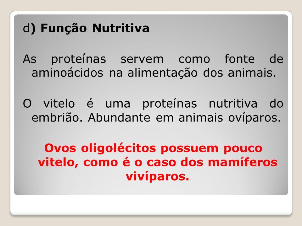 d) Função Nutritiva As proteínas servem como fonte de aminoácidos na alimentação dos animais. O vitelo é uma proteínas nutritiva do embrião. Abundante