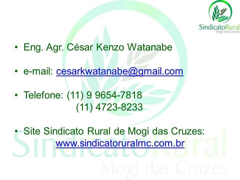 Eng. Agr. César Kenzo Watanabe e-mail: cesarkwatanabe@gmail.comcesarkwatanabe@gmail.com Telefone: (11) 9 9654-7818 (11) 4723-8233 Site Sindicato Rural