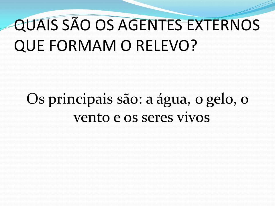 QUAIS SÃO OS AGENTES EXTERNOS QUE FORMAM O RELEVO.