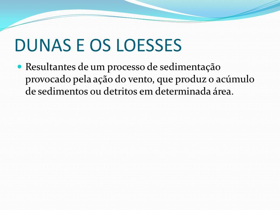 DUNAS E OS LOESSES Resultantes de um processo de sedimentação provocado pela ação do vento, que produz o acúmulo de sedimentos ou detritos em determinada área.