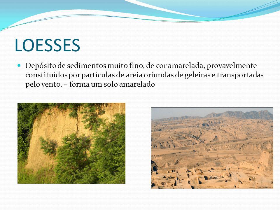 LOESSES Depósito de sedimentos muito fino, de cor amarelada, provavelmente constituídos por partículas de areia oriundas de geleiras e transportadas pelo vento.