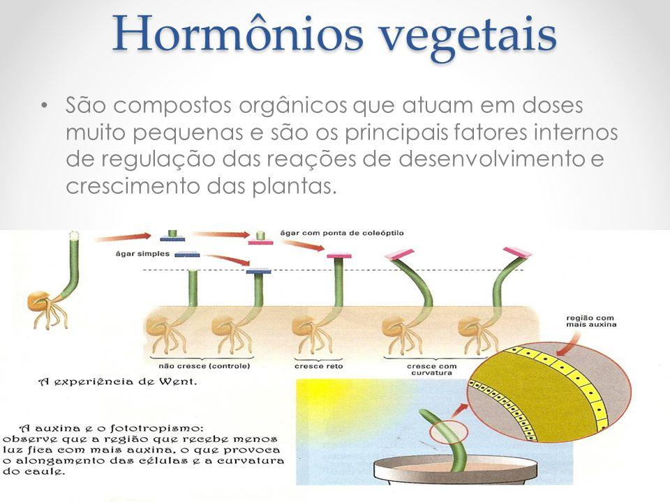 Hormônios vegetais São compostos orgânicos que atuam em doses muito pequenas e são os principais fatores internos de regulação das reações de desenvolvimento e crescimento das plantas.