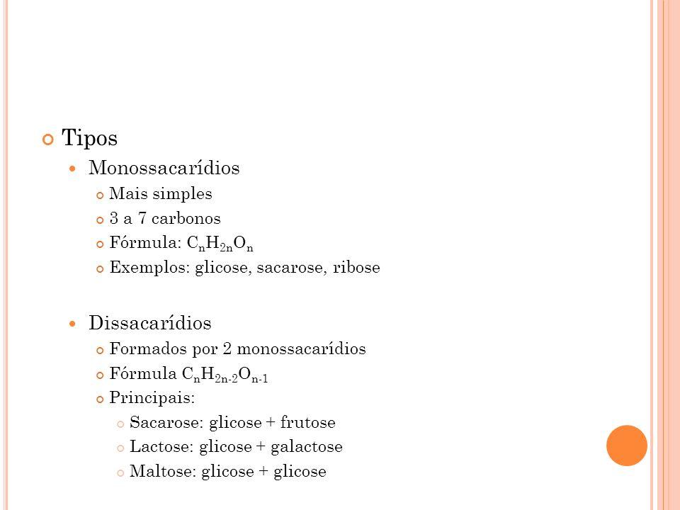 Tipos Monossacarídios Mais simples 3 a 7 carbonos Fórmula: C n H 2n O n Exemplos: glicose, sacarose, ribose Dissacarídios Formados por 2 monossacarídi