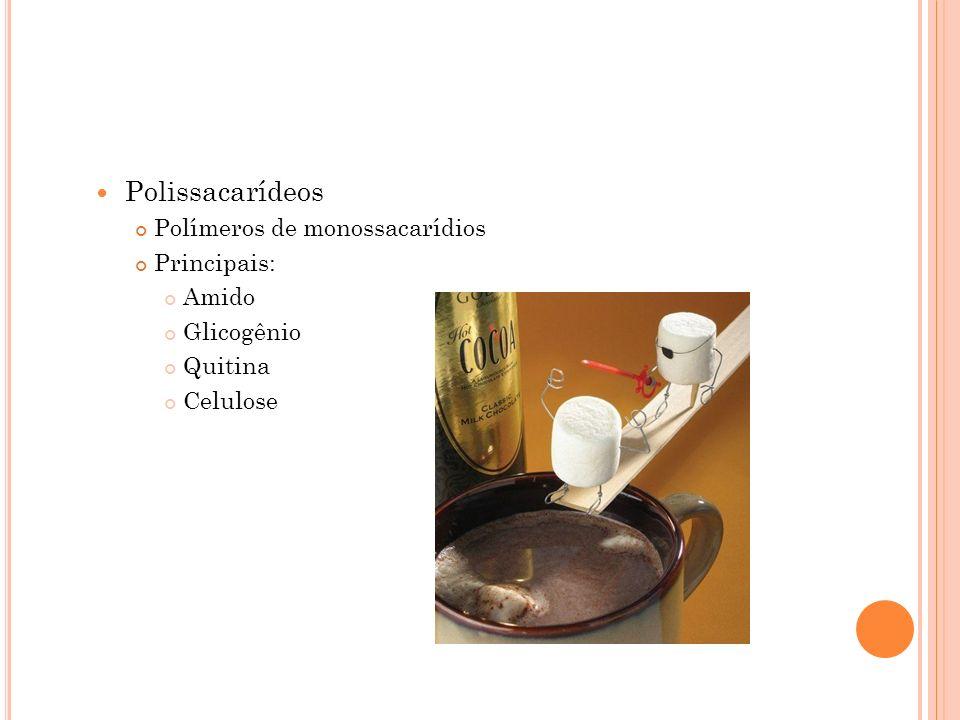 Polissacarídeos Polímeros de monossacarídios Principais: Amido Glicogênio Quitina Celulose