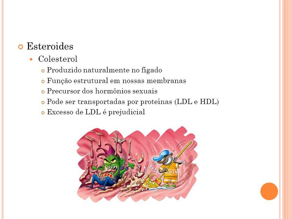 Esteroides Colesterol Produzido naturalmente no fígado Função estrutural em nossas membranas Precursor dos hormônios sexuais Pode ser transportadas po