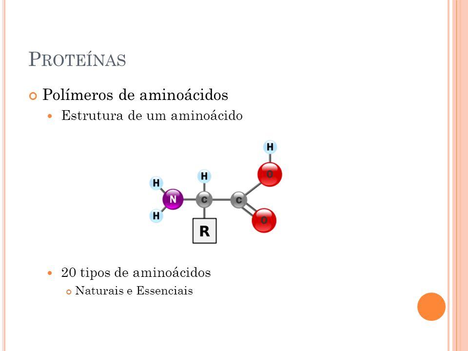 P ROTEÍNAS Polímeros de aminoácidos Estrutura de um aminoácido 20 tipos de aminoácidos Naturais e Essenciais