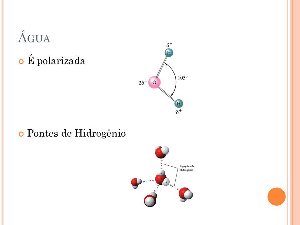 Á GUA É polarizada Pontes de Hidrogênio