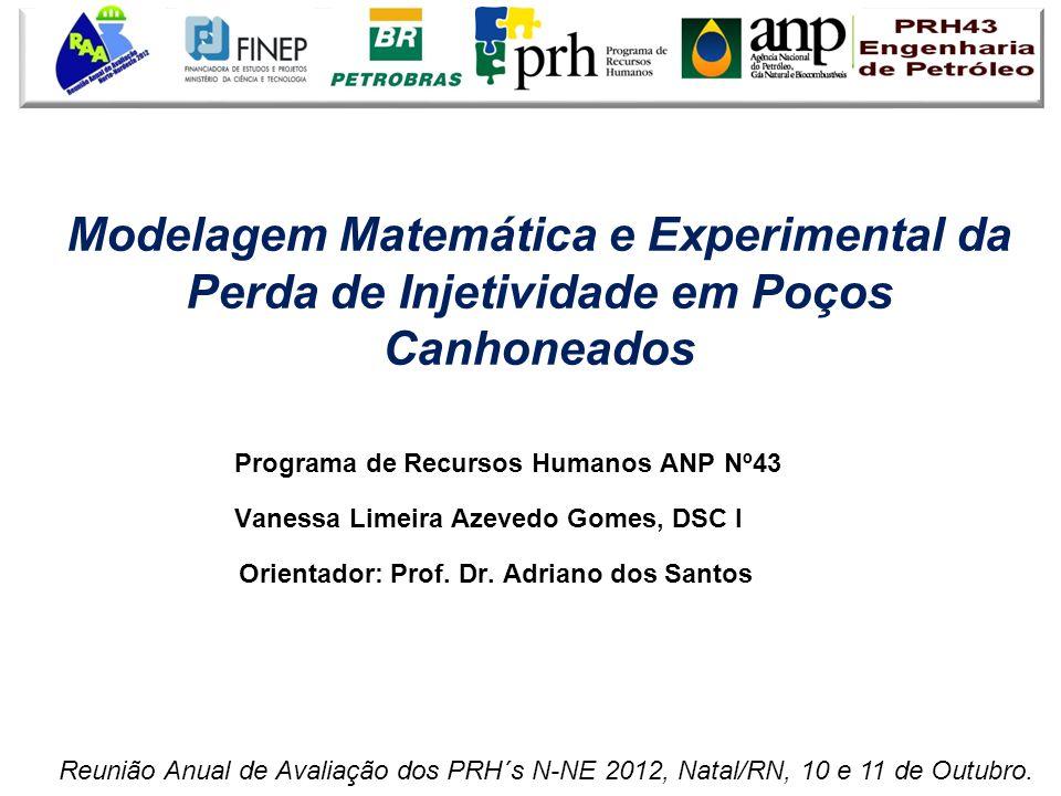 Programa de Recursos Humanos ANP Nº43 Vanessa Limeira Azevedo Gomes, DSC I Orientador: Prof. Dr. Adriano dos Santos Modelagem Matemática e Experimenta