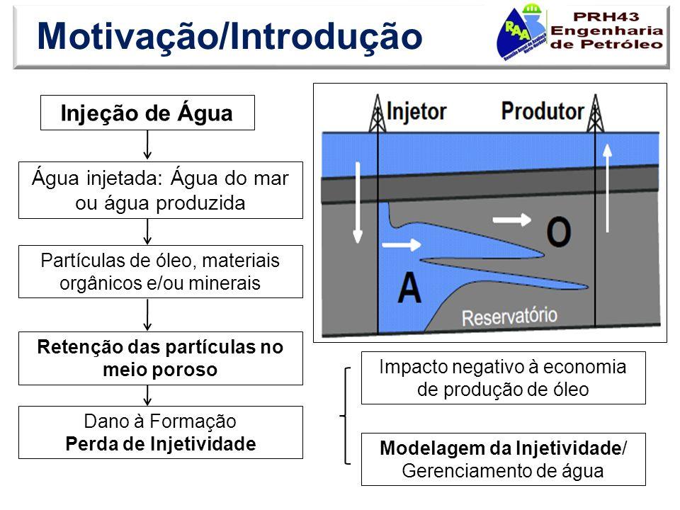 Motivação/Introdução Injeção de Água Água injetada: Água do mar ou água produzida Partículas de óleo, materiais orgânicos e/ou minerais Retenção das p