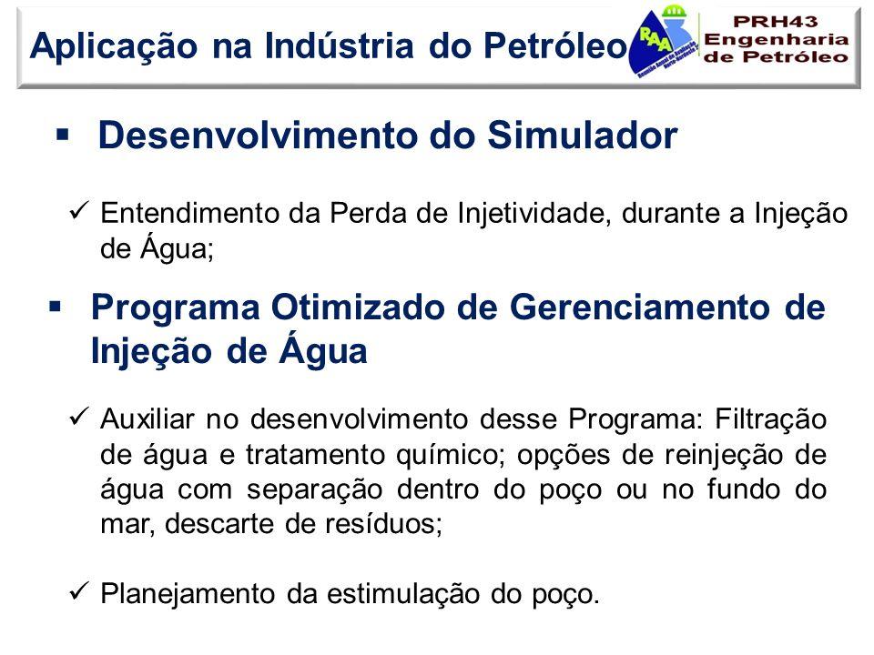 Desenvolvimento do Simulador Aplicação na Indústria do Petróleo Entendimento da Perda de Injetividade, durante a Injeção de Água; Programa Otimizado d