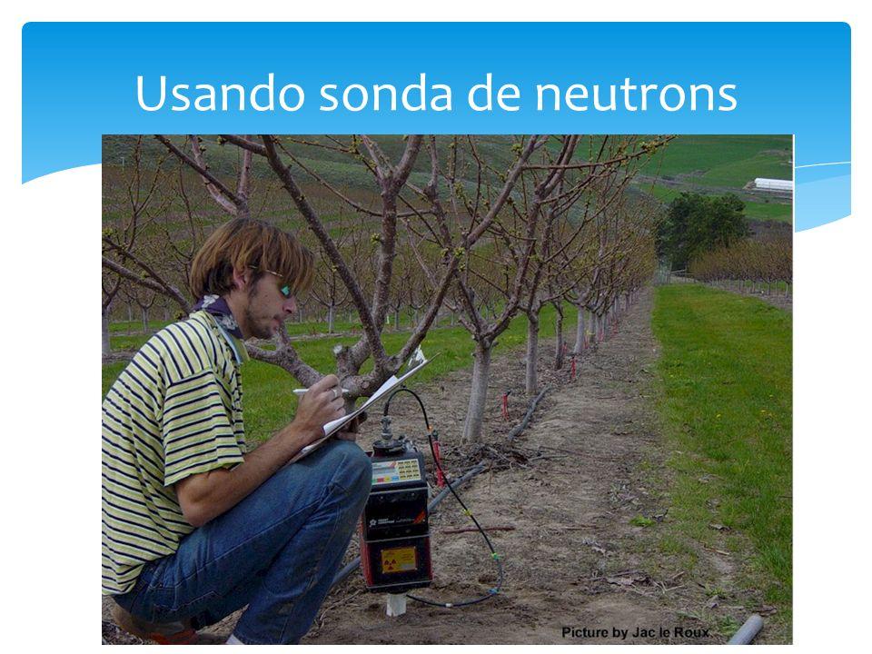 Usando sonda de neutrons
