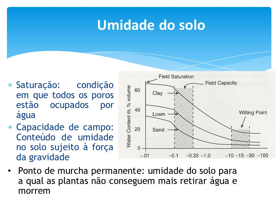 Saturação: condição em que todos os poros estão ocupados por água Capacidade de campo: Conteúdo de umidade no solo sujeito à força da gravidade Ponto