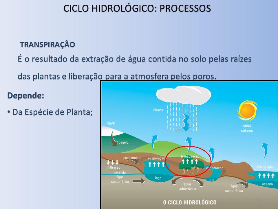 TRANSPIRAÇÃO É o resultado da extração de água contida no solo pelas raízes das plantas e liberação para a atmosfera pelos poros. Depende: Da Espécie
