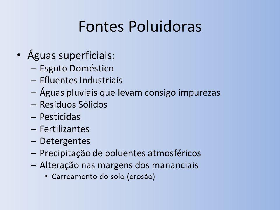 Fontes Poluidoras Águas superficiais: – Esgoto Doméstico – Efluentes Industriais – Águas pluviais que levam consigo impurezas – Resíduos Sólidos – Pes