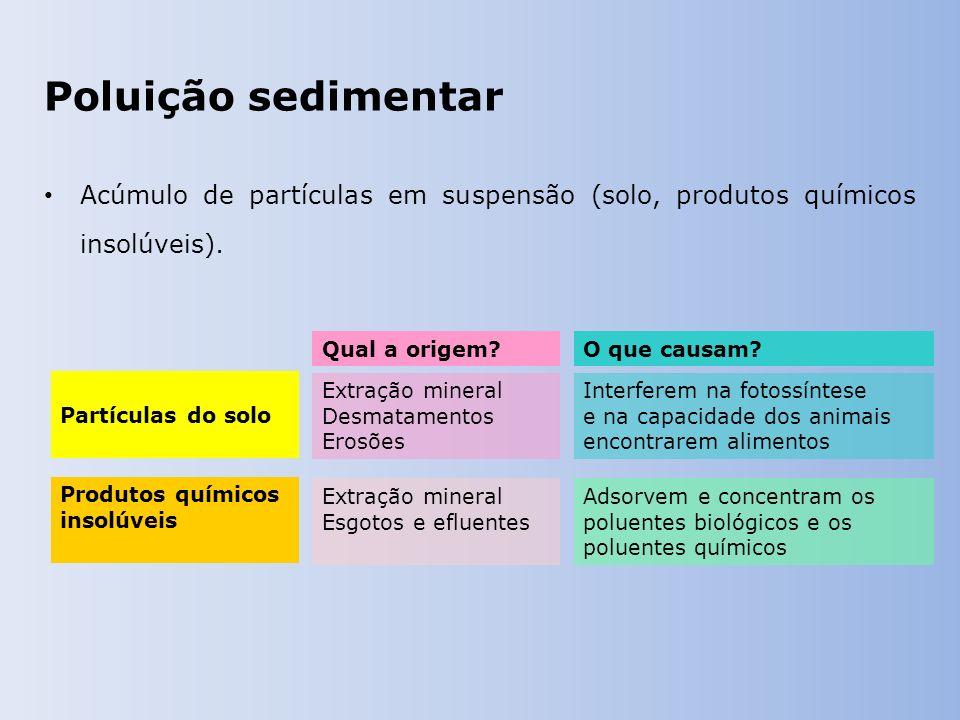 Poluição sedimentar Acúmulo de partículas em suspensão (solo, produtos químicos insolúveis). Qual a origem?O que causam? Extração mineral Desmatamento