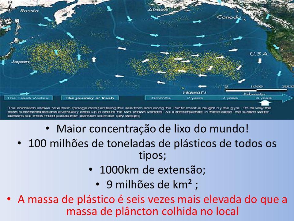 Maior concentração de lixo do mundo! 100 milhões de toneladas de plásticos de todos os tipos; 1000km de extensão; 9 milhões de km² ; A massa de plásti