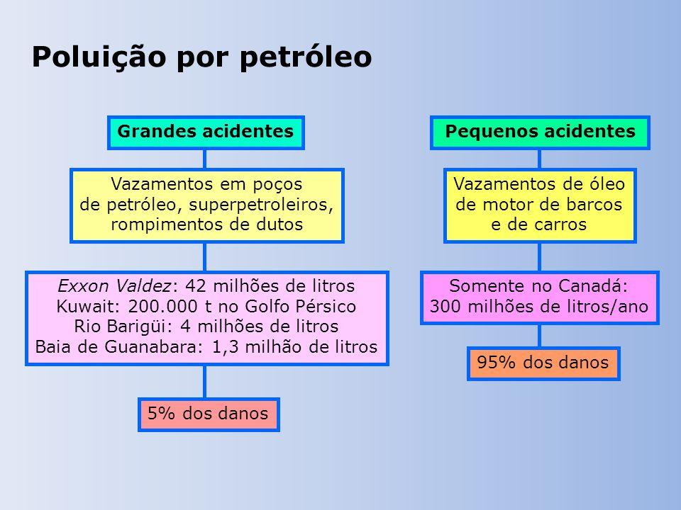 Poluição por petróleo Grandes acidentes Vazamentos em poços de petróleo, superpetroleiros, rompimentos de dutos Exxon Valdez: 42 milhões de litros Kuwait: 200.000 t no Golfo Pérsico Rio Barigüi: 4 milhões de litros Baia de Guanabara: 1,3 milhão de litros 5% dos danos Pequenos acidentes Vazamentos de óleo de motor de barcos e de carros Somente no Canadá: 300 milhões de litros/ano 95% dos danos