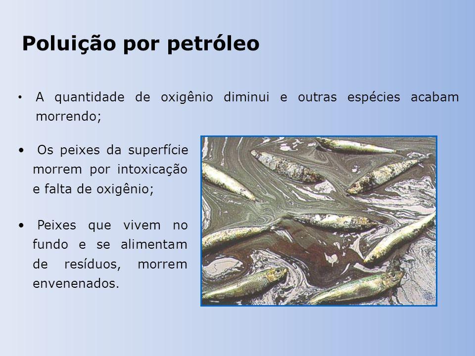 Poluição por petróleo A quantidade de oxigênio diminui e outras espécies acabam morrendo; Os peixes da superfície morrem por intoxicação e falta de oxigênio; Peixes que vivem no fundo e se alimentam de resíduos, morrem envenenados.