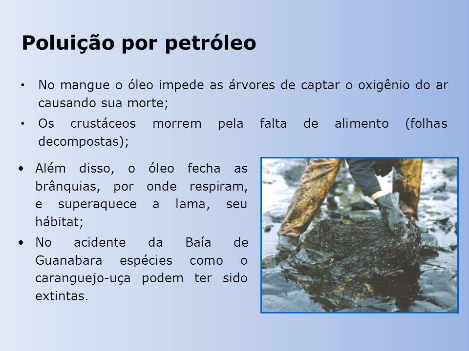 Poluição por petróleo No mangue o óleo impede as árvores de captar o oxigênio do ar causando sua morte; Os crustáceos morrem pela falta de alimento (folhas decompostas); Além disso, o óleo fecha as brânquias, por onde respiram, e superaquece a lama, seu hábitat; No acidente da Baía de Guanabara espécies como o caranguejo-uça podem ter sido extintas.