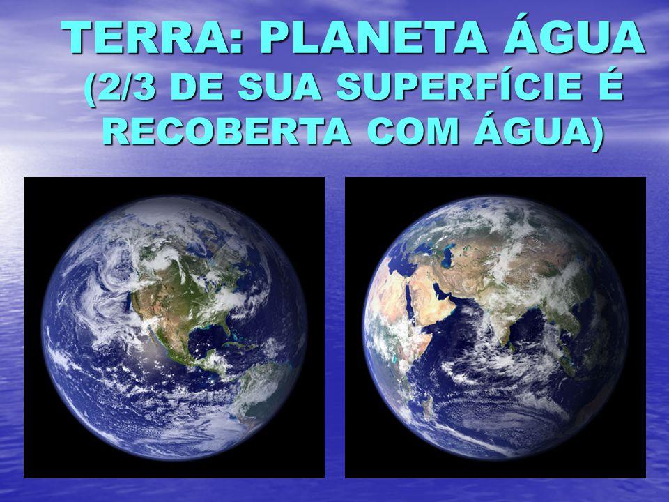 TERRA: PLANETA ÁGUA (2/3 DE SUA SUPERFÍCIE É RECOBERTA COM ÁGUA)