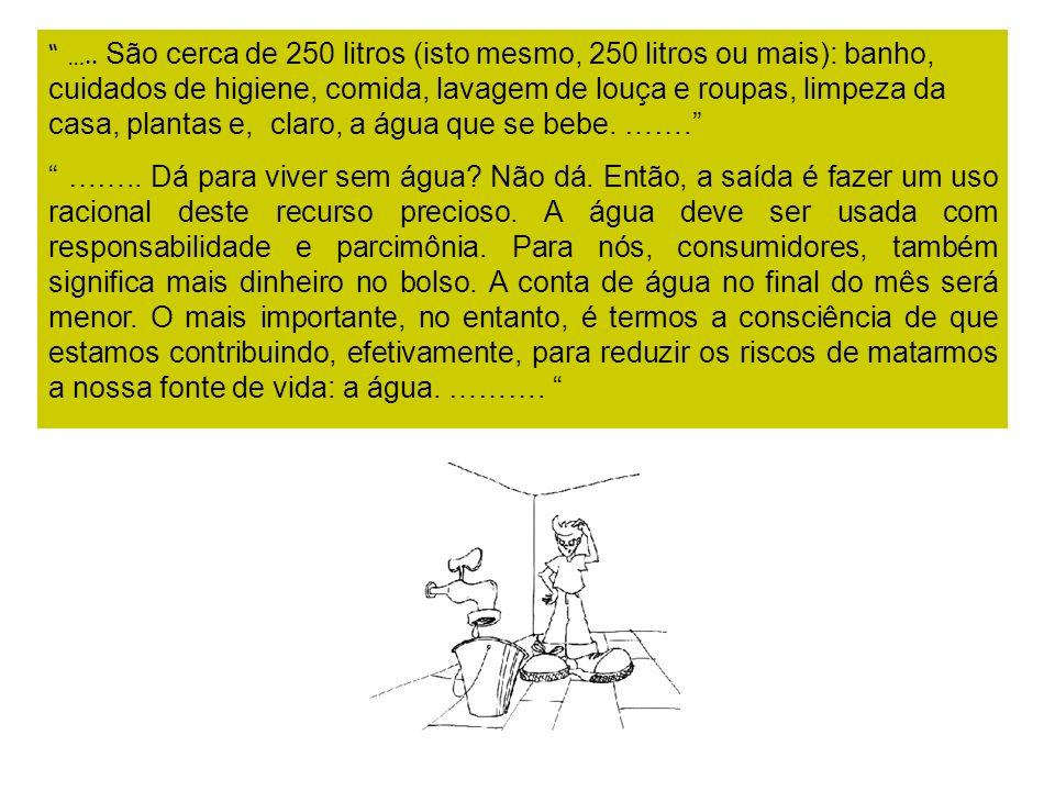 ….. São cerca de 250 litros (isto mesmo, 250 litros ou mais): banho, cuidados de higiene, comida, lavagem de louça e roupas, limpeza da casa, plantas