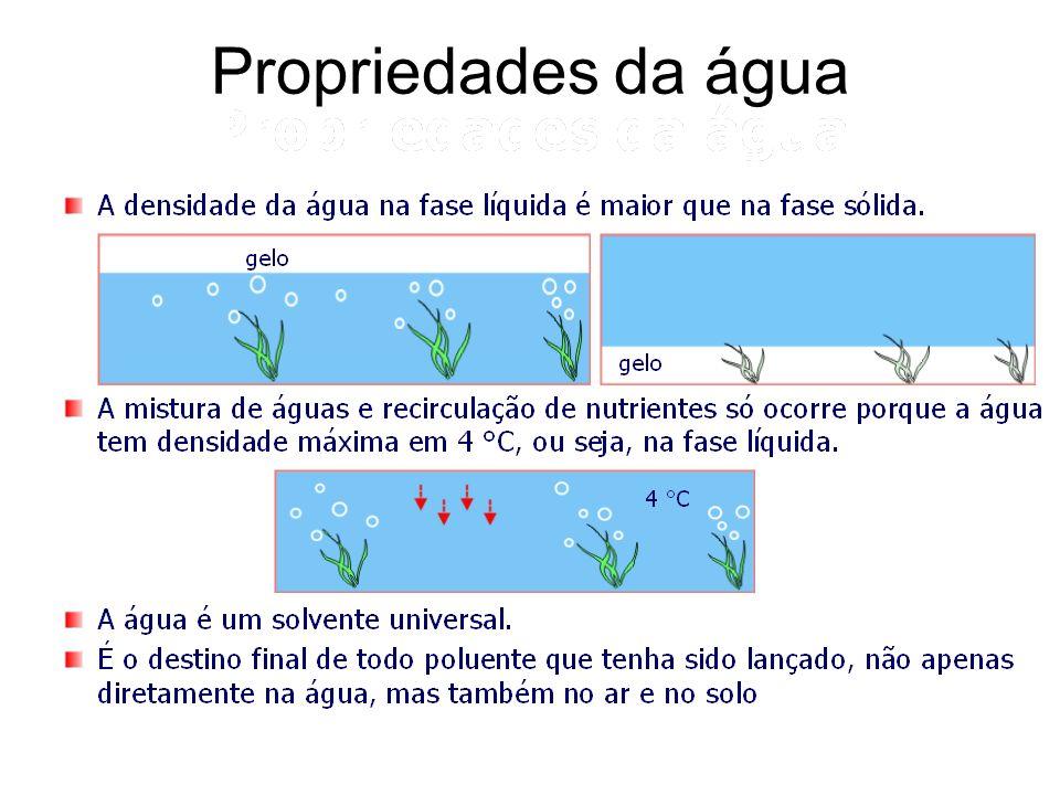 Água no corpo humano A água representa 70% da massa do corpo humano adulto (de um bebê 90%).
