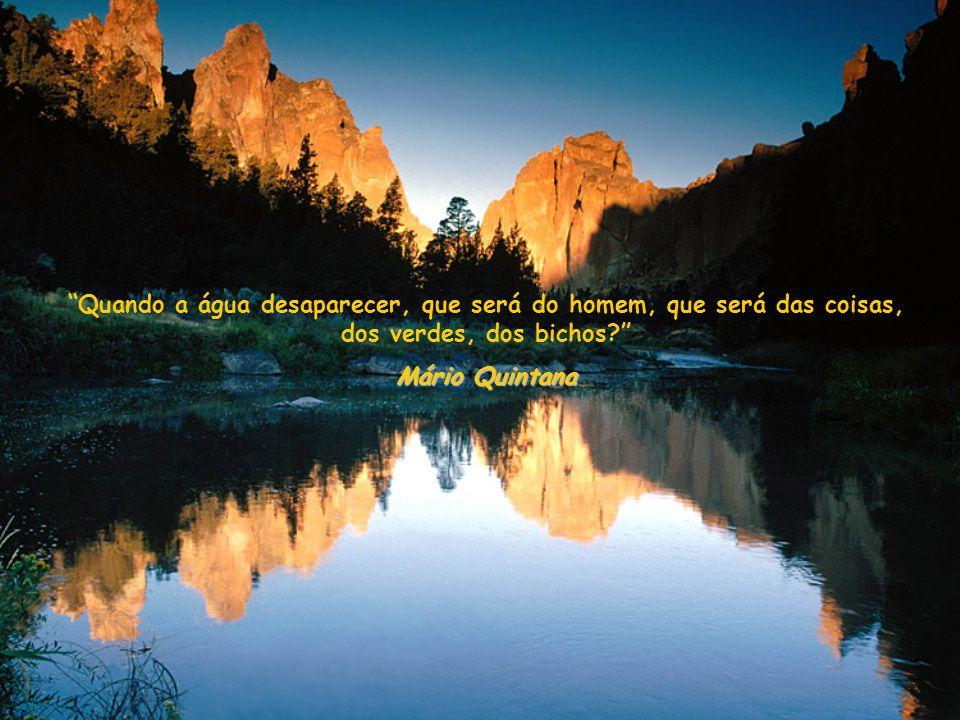 Quando a água desaparecer, que será do homem, que será das coisas, dos verdes, dos bichos.