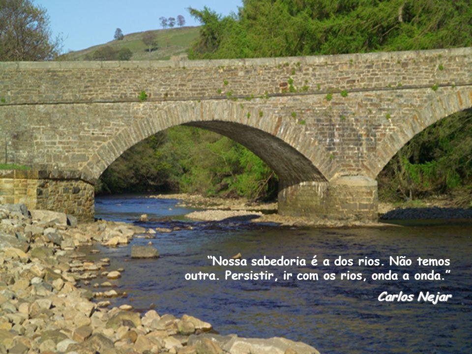 Nossa sabedoria é a dos rios. Não temos outra. Persistir, ir com os rios, onda a onda. Carlos Nejar